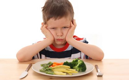 تغذیه چیست