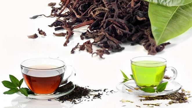 تفاوت میان چای سبز و چای سیاه کدام هستند؟