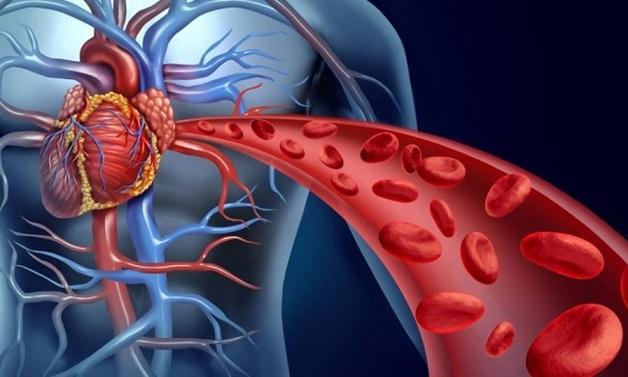 روزه گرفتن بیماران قلبی و عروقی