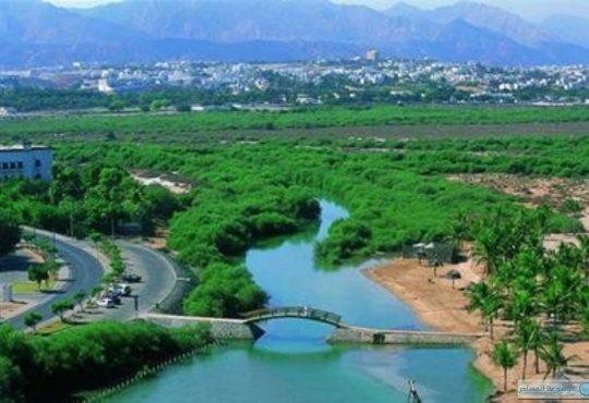 منطقه صلاله در عمان